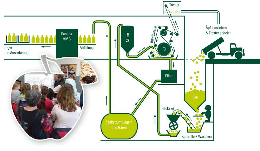 Schaubild zur Apfelwein-Herstellung